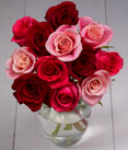 sustainable roses